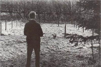 Întâlnire de gradul 3 într-o pădure din Scoţia