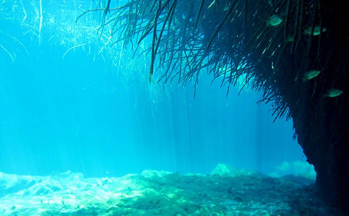 Descoperirea unui ocean subteran