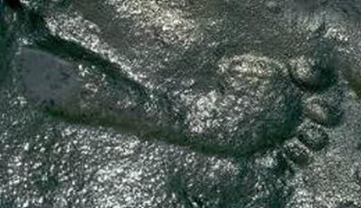 Au trăit oamenii în Permian?