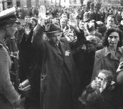 Rolul S.A.-ului şi S.S.-ului în persecutarea şi exterminarea evreilor