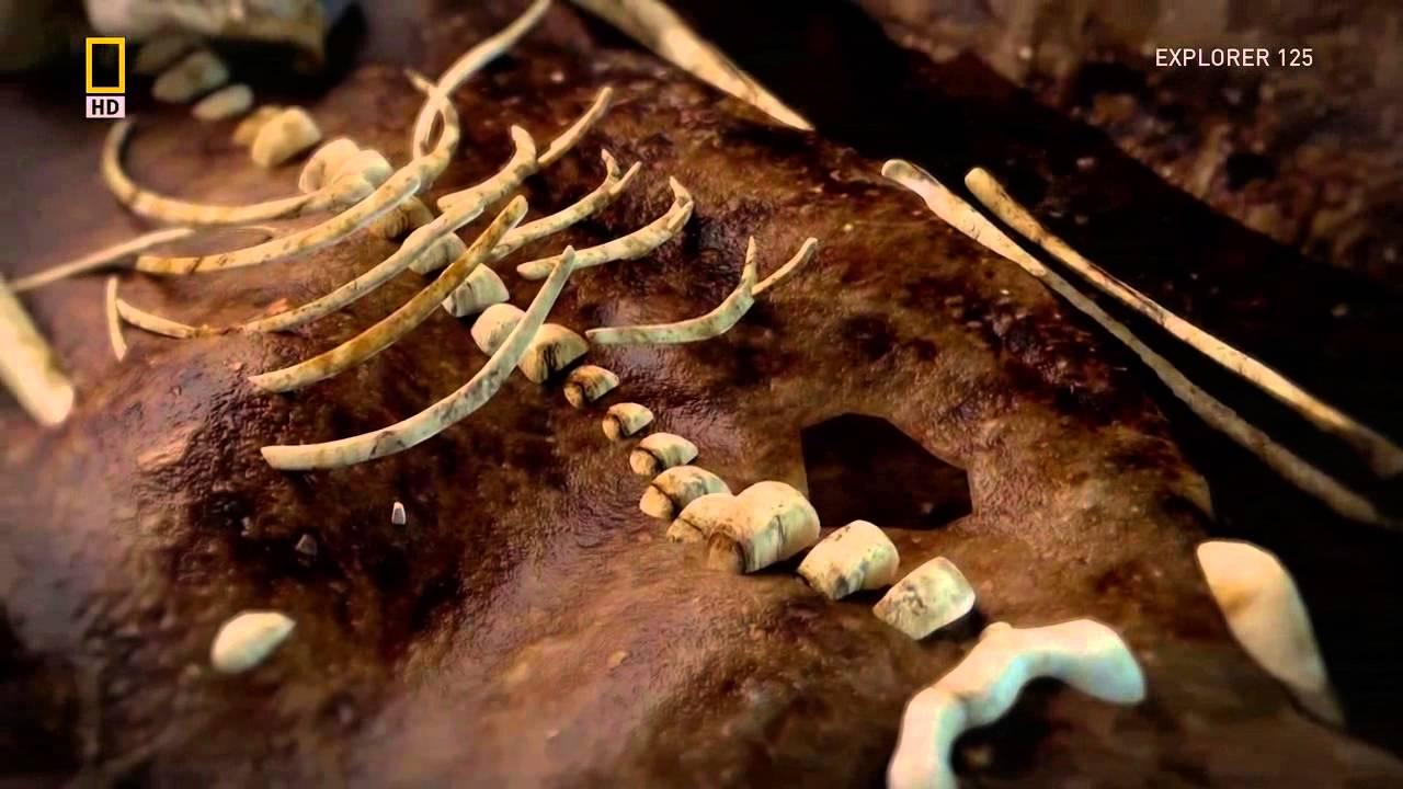 Vampirii au trăit În Irlanda în Evul Mediu
