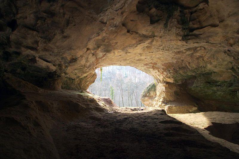 Omul de Neanderthal şi omul modern despărţiţi de peste o jumătate de milion de ani