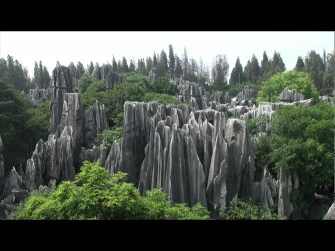 Pădurea de piatră de la Sihilin